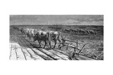 Breaking the Prairie  Illustration from 'Harper's Weekly'  1871  from 'The Pageant of America …