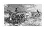 The Prairie Sod Plow  Illustration from 'Harper's Weekly'  1868  from 'The Pageant of America …