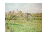Apple Trees at Gragny  Afternoon Sun  1900