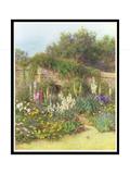 In Munstead Wood Garden  Gertrude Jekyll's Garden  Godalming  Surrey