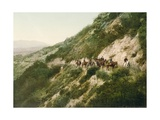Old Trail to Mount Wilson  Pasadena  California  1900