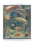 Life in Paleozoic Seas  Illustration from 'The Science of Life'