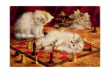 Cats with a Chess Board