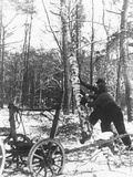A Couple Cutting Down a Tree for Firewood  21st February 1947