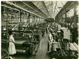 Chenille Weft Weaving  Carpet Factory  1923