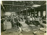 The Finishing Room  Axminster Section  Carpet Factory  1923