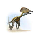 Tupuxuara  a Type of Pterosaur  Lived in Present Day Brazil  2009