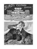Advertisement for Bird's Custard Powder  from 'The King'  June 1st 1901