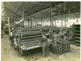 Carding Room  Long Meadow Mill  1923