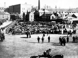 Cattle and Wholesale Market  Kidderminster  1900