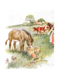 'Saw Two Pails Full of Milk and Had a Long Lovely Drink'  Illustration from 'The Naughty Neddy…