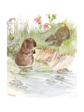 'Called on Squire Water Rat  Old Friend of the Family'  Illustration from '