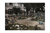Lawn Covered with Life-Sized Porcelain Figures of Animals and Gnomes  Houlgate  France  1932