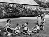 Feeding Time in Elder Park  1955