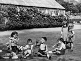 Feeding Time in Elder Park  1955