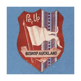 Play Up Bishop Auckland