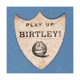 Play Up Birtley!