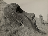 View of a Statue with a Rare Disk on the Earlobe  Rano Raraku Crater  Easter Island  1921