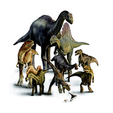 A Composite of Dinosaurs That Lived in the Southern Hemisphere  2007