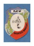 Play Up Brookside Wanderers