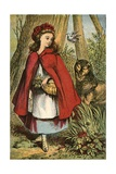 The Wolf Follows Red Riding Hood