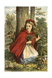 Little Red Riding Hood Gathering Flowers