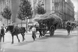 Requisitioning Wheat and Straw for the Army  Paris  1914
