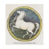 Invicta  the Saxon Emblem of Kent