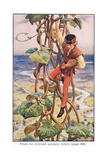 Then He Climbed Quietly Down  Jack and the Beanstalk  1925