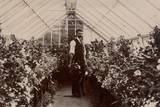 Gardener in a Greenhouse  1900