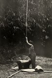 A Woman Pounding Grain with Native Sumatran Tools  Sumatra  1920
