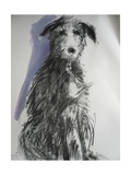Deerhound  2012