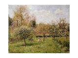 Spring at Eragny; Printemps a Eragny  1900