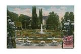 Frankfurt  Palmengarten  Das Blumenparterre Postcard Sent in 1913