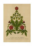 The Rose  Thistle and Shamrock The Floral Badges of England  Scotland and Ireland