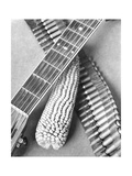 Mexican Revolution  Guitar  Corn and Ammunition Belt  Mexico City  1927
