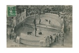 Bern Zoo  Bear Garden Postcard Sent on 19 June 1913