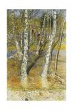 Springflood  1902