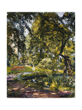 Garden in Godrammstein with a Twisted Tree and Pond; Garten in Godrammstein Mit Verwachsenem Baum…
