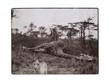 Ugigi  Belgian Congo  c1910