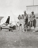 South African Gunners with their Pet Zebra in East Africa