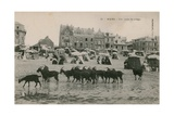 Mers - a Part of the Beach Postcard Sent in 1913