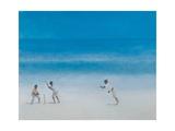 Cricket on the Beach  2012