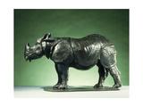 3 Year Old Rhinoceros; Rhinoceros de 3 Ans  c1910