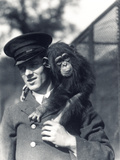 Keeper F Shelly with Chimpanzee Johnnie or Marco at ZSL London Zoo