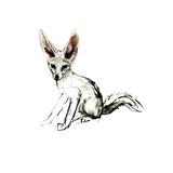 Foxy (Sand Fox)  2009
