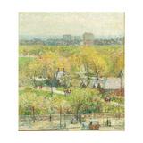 Across the Park  1904