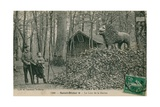 Father and Son Looking at Lion Sculpture in Saint Dizier Postcard Sent in 1913 Published by the…