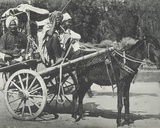 Ekha Cart  Cawnpore  January 1912