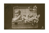 Postcard of a Baby in a Wicker Basket with Flowers  Sent in January 1913
